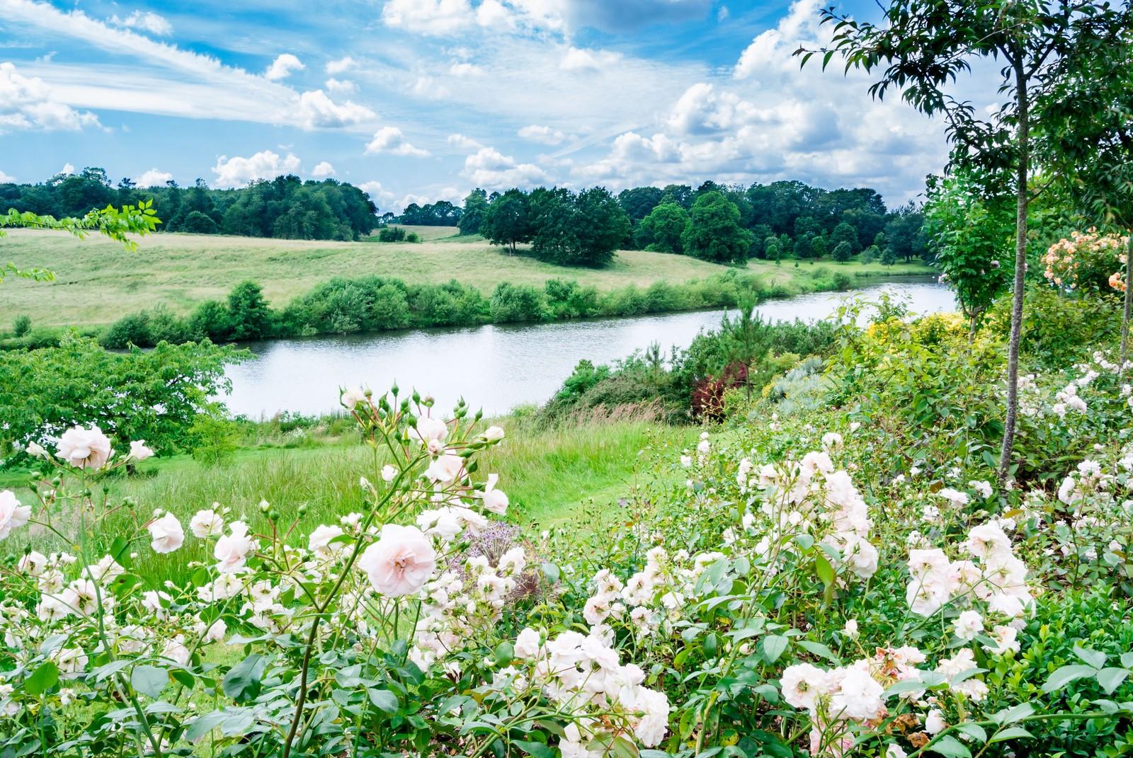 穏やかな昼下がりの公園の画像