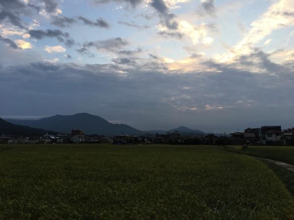 朝陽の画像